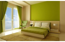 Interior and Exterior Latex Paint